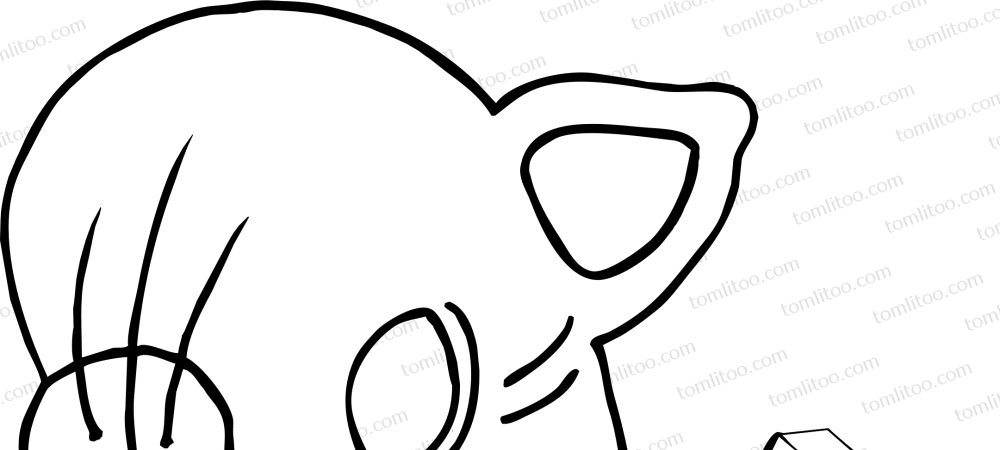 Masque Chat Coloriage N B A Imprimer Tomlitoo